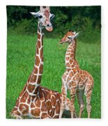 Reticulated Giraffe Calf With Mother Fleece Blanket