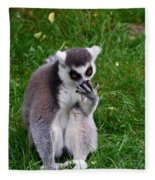 Ring-tailed Lemur Fleece Blanket