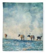 Roam Free Fleece Blanket