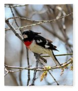 Rose Breasted Grosbeak Fleece Blanket