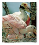 Roseate Spoonbill Adult With Young Fleece Blanket