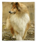 Rough Collie Dog Fleece Blanket
