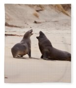 Rough Courtship Of Male And Female Hookers Sealions Fleece Blanket