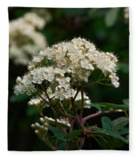 Rowan Flowers Fleece Blanket