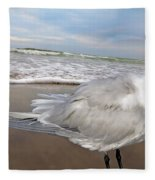 Royal Tern Fleece Blanket