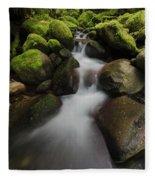 Ruckel Creek  Oregon, United States Fleece Blanket