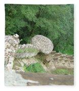Rud-khan Castle Fleece Blanket