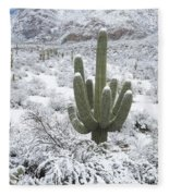 Saguaro Cactus After Rare Desert Fleece Blanket