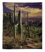 Saguaro Cactuses In Saguaro National Park Fleece Blanket