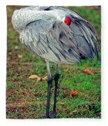 Sandhill Crane Fleece Blanket