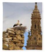 Santo Domingo De La Calzada Fleece Blanket
