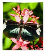Sapho Longwing Butterfly Fleece Blanket