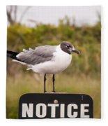 Seagull Standing On A Notice Sign Fleece Blanket by Alex Grichenko