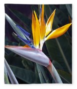 Seaport Bird Of Paradise Fleece Blanket