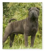 Shar Pei Dog Fleece Blanket