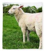 Sheep In Field Fleece Blanket
