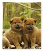 Shiba Inu Puppies Fleece Blanket