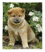 Shiba Inu Puppy Dog Fleece Blanket