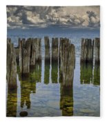 Shore Pilings At Fayette State Park Fleece Blanket