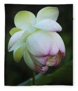 Shy Lotus Fleece Blanket
