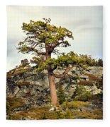 Sierra Landscape Fleece Blanket