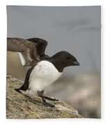 Sitting Dovekie Fleece Blanket