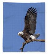 Smooth Landing 3 Fleece Blanket