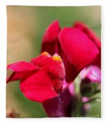 Snapdragon Named Red Chimes Fleece Blanket