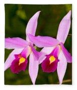 Sophronitis Orchid Fleece Blanket