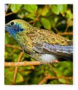 Sparkling Violet Ear Hummingbird Fleece Blanket