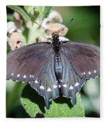Spicebush Swallowtail Papilio Troilus Fleece Blanket