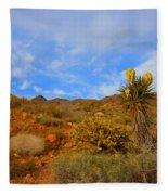Springtime In Arizona Fleece Blanket