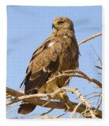 Steppe Eagle Aquila Nipalensis Fleece Blanket
