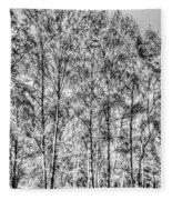 Summer Forest Trees Fleece Blanket