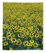 Sunflower Nirvana 13 Fleece Blanket