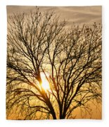 Sunset Tree Fleece Blanket