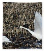 Swan Fleece Blanket