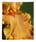 Tall Bearded Iris Named Penny Lane Fleece Blanket