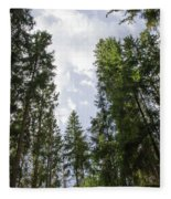 Tall Spruce Trees Fleece Blanket