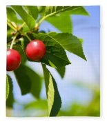 Tart Cherries Fleece Blanket