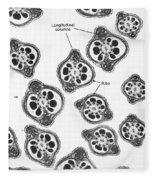 Tem Of Chinese Hamster Spermatozoa Fleece Blanket