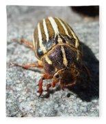 Ten Lined June Beetle Fleece Blanket