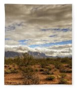 The Desert Southwest  Fleece Blanket