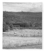 The Hay Field Fleece Blanket