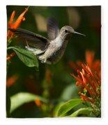 The Hummingbird Hover  Fleece Blanket