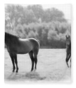 The Stallion Fleece Blanket