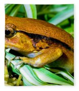 Tomato Frog Fleece Blanket