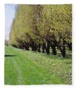 Trees Along A Walkway In A Botanical Fleece Blanket
