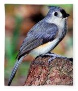 Tufted Titmouse Parus Bicolor Fleece Blanket