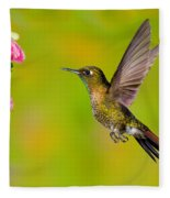 Tyrian Metaltail Hummingbird Fleece Blanket